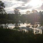 The beautiful grounds - lots of wildlife