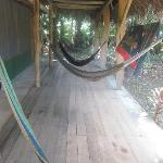 Hammocks...for lovely naps and reading...