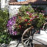 Flowers on Cart in  Courtyard