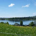 Wallersee bei Tag