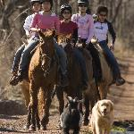 Ride horses on our 400 acres