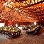 Wedding Reception in our Barn