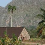 Blick vom Balkon auf Tabakfelder und Nationalpark
