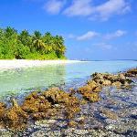 l'isola vista dal reef