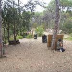 Campo de juego Battle Field