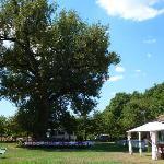 Photo of Parco Verde
