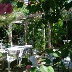 Beautiful and Romantic Garden Setting