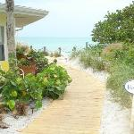 Your path to the beach