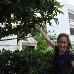 Fruit from the Moushmoula tree