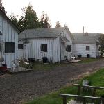 Cabins near road
