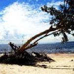 Praia de Rio