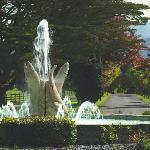 Fountain & Driveway