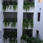 Atrium garden in hallways