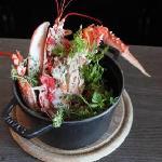 Cocotte de homard