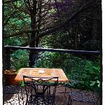 Back deck looking over the forest