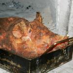 Cochon dans le four