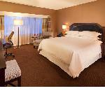 Renovated guestrooms 2012