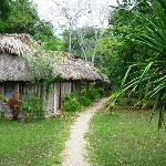 Thatch-roofed cabanas just off the Mopan River