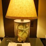 lamp in the room