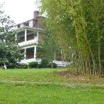 Reynolds Mansion from bamboo
