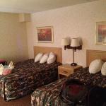 poolside / courtyard room