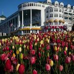 Grand Hotel Gardens