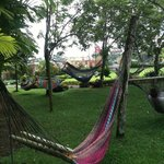 Comfy hammocks with view of the volcano