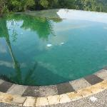 the pool with green tiles