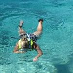 I am 56. Snorkelling in the shallows I saw tons of urchins, starfish and smaller fish