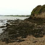 Beach opposite Marshmere