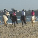 Beach Trecking from our Equestrian Centre