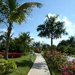 Atravesando los jardines rumbo a la playa