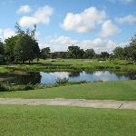 the par 3 10th hole at Davie Golf & CC (formerly Arrowhead Golf Club)