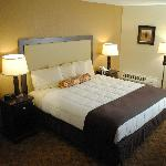 Executive King Room Non Smoking w/sleeper sofa
