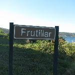 The way to Frutillar