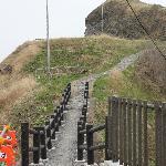 ペシ岬への道