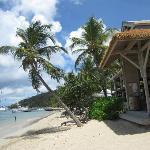 Cooper Island Beach Club Restaurant
