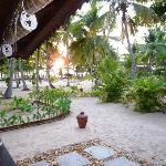 View of the Garden infront of Nagaswaram cottage