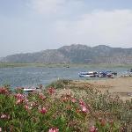 Dalyan River delta & taxi boats (41769952)