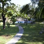 Gartenbereich und Pool