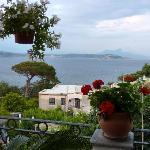 View on the Vesuvius