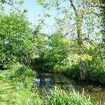 hill farm pond