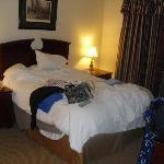 Bedroom of one bedroom unit