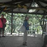 Papageienhaus