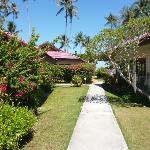 villas in a wonderful garden