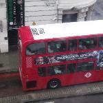 Tipicos buses