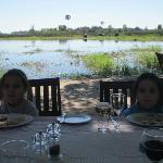 Dining room view - elephants and hippos!