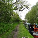 Peace and quiet with lush surroundings along the Trent and Mersey canal.