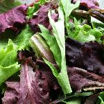 our own spring mix