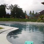 piscine et rizière
